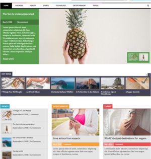 Laveo – Responsive Blog, News WordPress Theme