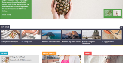 Laveo – Responsive Blog, News WordPress Theme